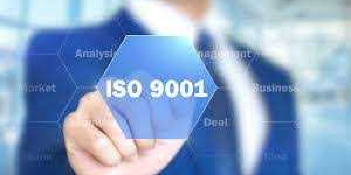 How to document roles and responsibilities according to ISO 9001 in Kuwait?