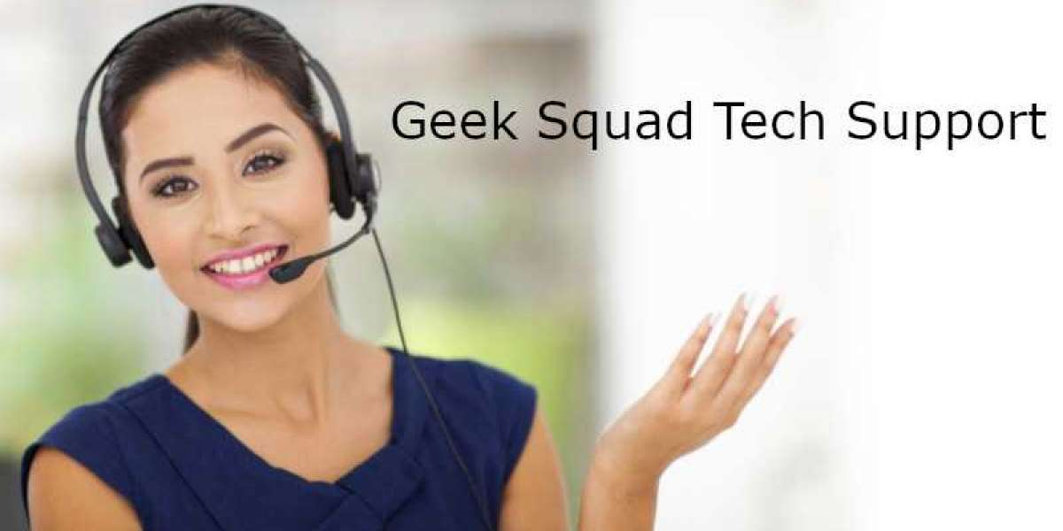 How do I schedule a Geek Squad Appointment?