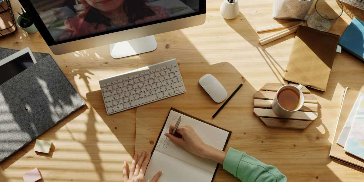 How Can You Take Help From Professional Essay Writer