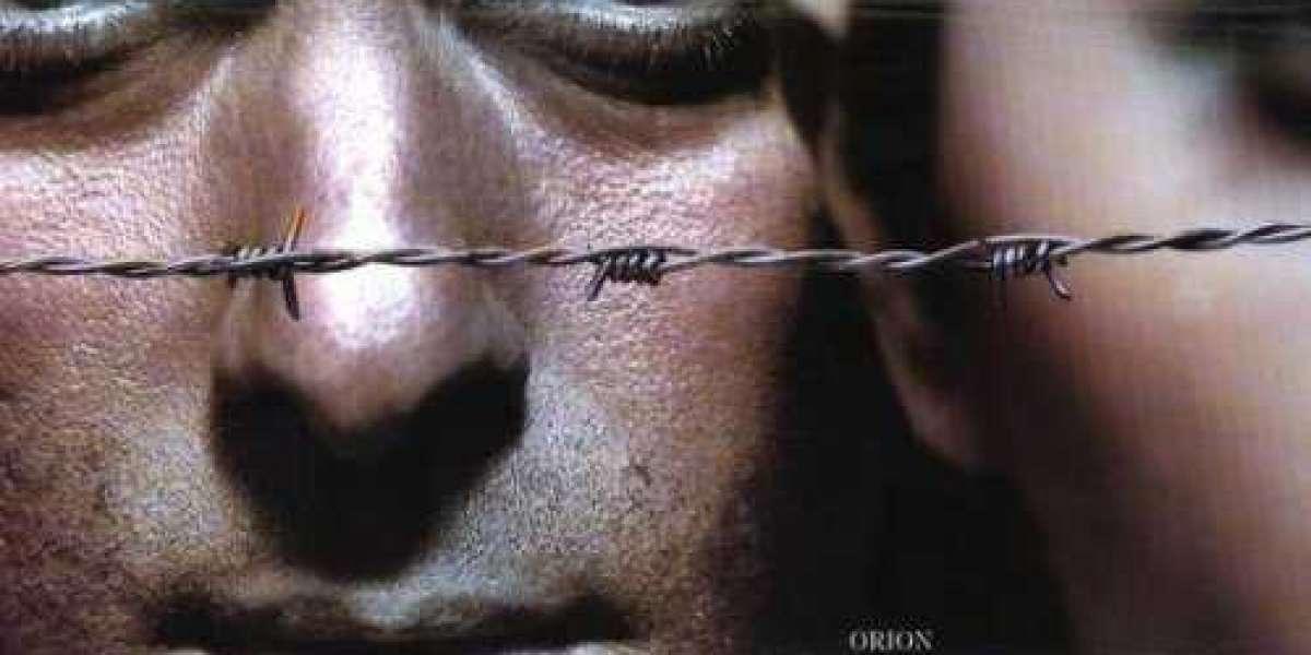 2k Happy Bhag Jayegi Dubbed Dubbed Movie Dts Torrents Free